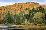 Autumn in the Umbagog National Wildlife Refuge, Errol, NH