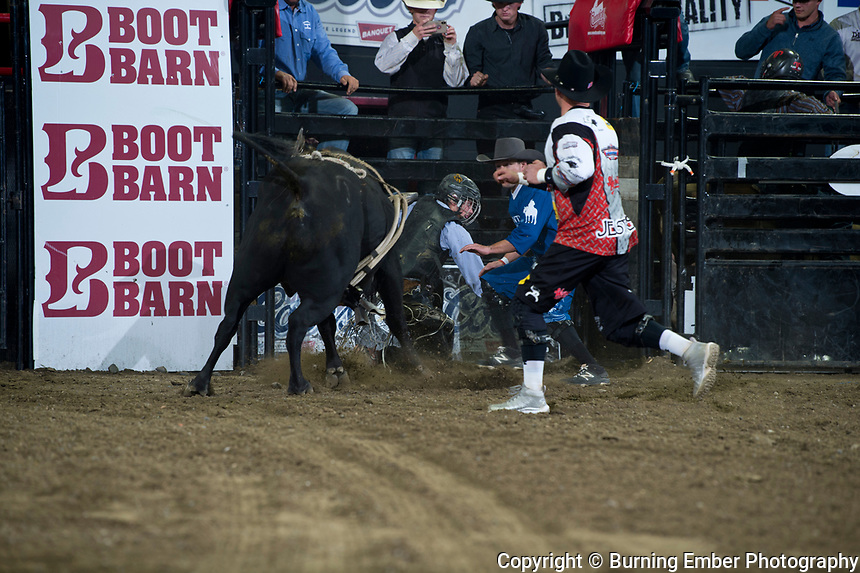 Dylan Grant on D&H Cattle 511 at the NILE Rodeo 1st Perf Oct 17th, 2019.  Photo by Josh Homer/Burning Ember Photography.  Photo credit must be given on all uses.