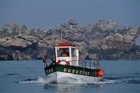 Europe/France/Bretagne/29/Finistère/Ile Vierge: bâteau de pêche