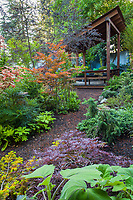 Mulched path between backyard garden beds leading to covered deck shelter garden room; California plant collector garden - Carol Brant