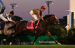 LOUISVILLE, KY -JUNE 18: Pleuven (Turtle Bowl x Under Estimated, by Singspiel, ridden by Channing Hill) wins the 26th running of the G2 Wise Dan. He is owned by Nelson McMakin and trained by Philip A. Sims. (Photo by Mary M. Meek/Eclipse Sportswire/Getty Images)