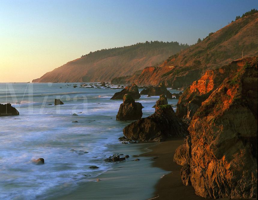 Scenic view of Westport-Union Landing State Park. California.