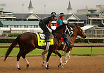 LOUISVILLE, KY - APRIL 28: Outwork (Uncle Mo x Nonna Mia, by Empire Maker) is ponied on the track with exercise rider Hector Ramos at Churchill Downs, Louisville KY in preparation for the Kentucky Derby. Owner Repole Stable, trainer Todd A. Pletcher. (Photo by Mary M. Meek/Eclipse Sportswire/Getty Images)