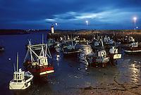 Europe/France/Bretagne/22/Cotes d'Armor /Erquy: Principal port de pèche à la coquille Saint Jacques vue de nuit