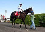 04 June 2011: Twirling Candy and Joel Rosario win the Californian Stakes at Hollywood Park in Inglewood, CA.