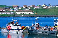 Halibut fishing vessels, St. Paul Island, Pribilof Islands, Alaska