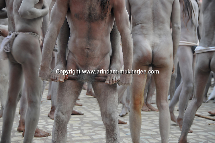 One Naga Sadhu (naked saints) standing on a stick tied around the penis of another fellow saint during the first Sahi Snan (Royal Bath) at Kumbh Mela  on 12th Feb 2010 . These naga sadhus represent the warrior cult in the Hindu religion and they practice extreme austerity in which they abstain from clothes, relationships and carnal desires. Weathered by such extreme measures they attain prowess that is way beyond a common man's strength. 12th February 2010. Haridwar, Uttarakhand, India, Arindam Mukherjee