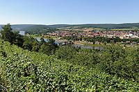 Weinberge bei der Clingenburg in  Klingenberg am Main, Bayern, Deutschland