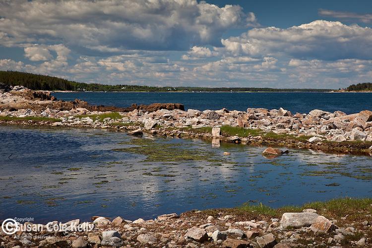 Petit Manan Unit, Maine Coastal Islands National Wildlife Refuge, Steuben, ME, USA