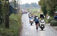 Edvald Boasson Hagen (NOR/NTT) trying to outrun the peloton coming down the Holleweg <br /> <br /> 104th Ronde van Vlaanderen 2020 (1.UWT)<br /> 1 day race from Antwerpen to Oudenaarde (BEL/243km) <br /> <br /> ©kramon