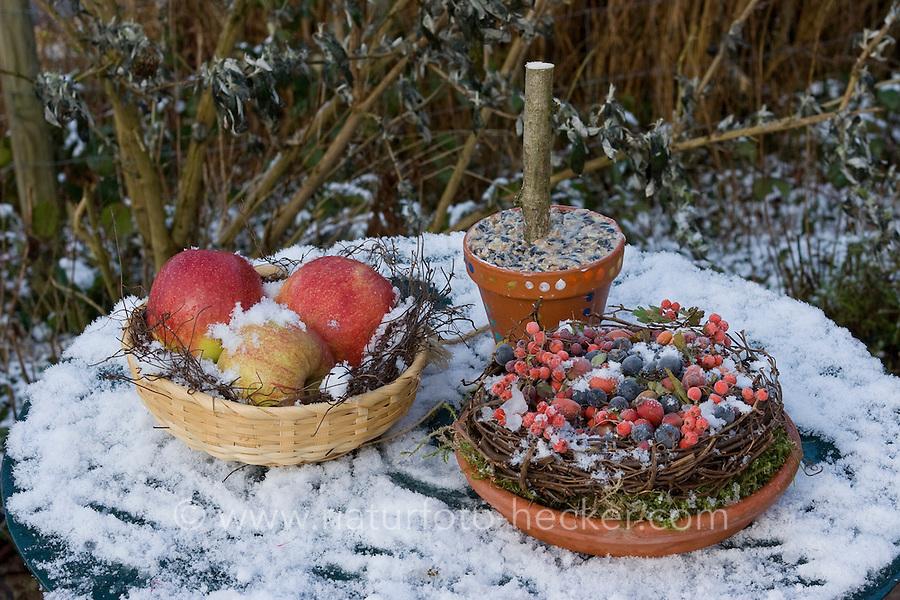 Vogelfutter, iIm Herbst gesammelte und eingefrorene Wildfrüchte - Vogelbeeren, Schlehen, Hagebutten - sowie Äpfel und Fettfutter mit Sonnenblumenkernen werden im winterlichen Garten als natürliches Vogelfutter angeboten, Vogel-Futter