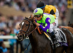DEL MAR, CA - NOVEMBER 03: Rushing Fall #11, ridden by Javier Castellano holds off Best Performance #1 and Jose Ortiz to win the Breeders' Cup Juvenile Fillies Turf at Del Mar Thoroughbred Club on November 03, 2017 in Del Mar, California. (Photo by Alex Evers/Eclipse Sportswire/Breeders Cup)