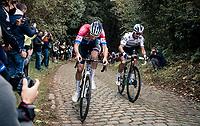 Dutch National Champion Mathieu Van der Poel (NED/Alpecin-Fenix) & World Champion Julian Alaphilippe (FRA/Deceuninck-QuickStep) battling it out up the mean (and newly introduced) Moskesstraat cobbles<br /> <br /> 60th De Brabantse Pijl 2020 - La Flèche Brabançonne (1.Pro)<br /> 1 day race from Leuven to Overijse (BEL/197km)<br /> <br /> ©kramon