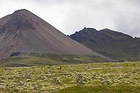 Sandfell am Faskrudsfjördur, Fáskrúðsfjörður, Vulkankegel, Vulkan, Island, volcano, Iceland