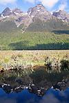 Mirror Lakes, Fiordland, New Zealand