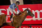 MAR 28,2015:Prince Bishop,ridden by William Buick,wins the Dubai World Cup at Meydan in Dubai,UAE. Kazushi Ishida/ESW/CSM