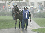 Winning Prize in the paddock before the Shadwell Turf Mile during one of the many downpours.   October 05, 2013.