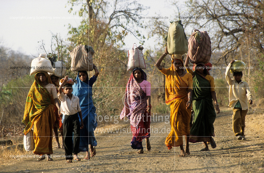 "Asien Indien IND Bargi , Adivasi auf dem Weg in ihr Dorf , sie wurden umgesiedelt durch Ueberschwemmung des Bargi Damm , Narmada Staudaemme | .South Asia India Bargi , Adivasi people returning to their village which is affected by Bargi dam in the Narmada valley.| [ copyright (c) Joerg Boethling / agenda , Veroeffentlichung nur gegen Honorar und Belegexemplar an / publication only with royalties and copy to:  agenda PG   Rothestr. 66   Germany D-22765 Hamburg   ph. ++49 40 391 907 14   e-mail: boethling@agenda-fototext.de   www.agenda-fototext.de   Bank: Hamburger Sparkasse  BLZ 200 505 50  Kto. 1281 120 178   IBAN: DE96 2005 0550 1281 1201 78   BIC: ""HASPDEHH"" ,  WEITERE MOTIVE ZU DIESEM THEMA SIND VORHANDEN!! MORE PICTURES ON THIS SUBJECT AVAILABLE!! INDIA PHOTO ARCHIVE: http://www.visualindia.net ] [#0,26,121#]"