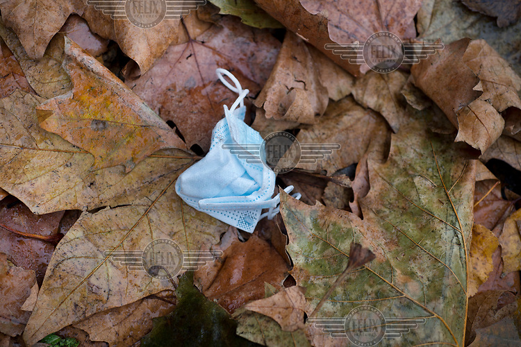 A discarded face mask lies among autumn leaves beside St John's Church, LB Hackney.