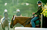 June 19, 2020: Barclay Tagg, trainer of Belmont Stakes favorite Tiz The Law, watches as horses prepare for the Belmont Stakes at Belmont Park in Elmont, New York. Scott Serio/Eclipse Sportswire/CSM