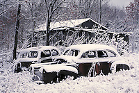 Abandoned, rusty old Ford and Chevy cars next to a delapidated barn; Winter setting; PR#9. Automobiles, car.
