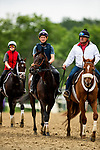 June 4, 2021:  Dream Shake gallops at Belmont Park in Elmont, New York on June 4, 2021. Evers/Eclipse Sportswire/CSM