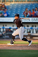 Charlotte Knights Jon Jay (3) at bat during an International League game against the Syracuse Mets on June 11, 2019 at NBT Bank Stadium in Syracuse, New York.  Syracuse defeated Charlotte 15-8.  (Mike Janes/Four Seam Images)