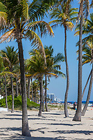 Ft. Lauderdale, Florida.  Beach Scene, Condos and Hotels in the Distance.