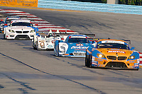 Action, Six Hours of the Glen, IMSA Tudor Series Race, Watkins Glen International Raceway, Watkins Glen, New York, June 2014.(Photo by Brian Cleary/www.bcpix.com)