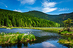 Deutschland, Bayern, Niederbayern, Naturpark Bayerischer Wald: am Kleinen Arbersee, im Hintergrund der Grosse Arber | Germany, Bavaria, Lower-Bavaria, Nature Park Bavarian Forest: at Little Arber Lake, at background The Great Arber mountain