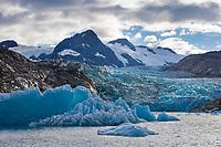 Glacier icebergs in the glacial lake formed by Nellie Juan glacier, Prince William Sound, Alaska.