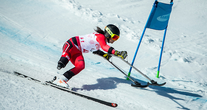 Braydon Luscombe, PyeongChang 2018 - Para Alpine Skiing // Ski para-alpin.<br /> Braydon Luscombe skis in the super combined // Braydon Luscombe skis dans le super combiné. 13/03/2018.