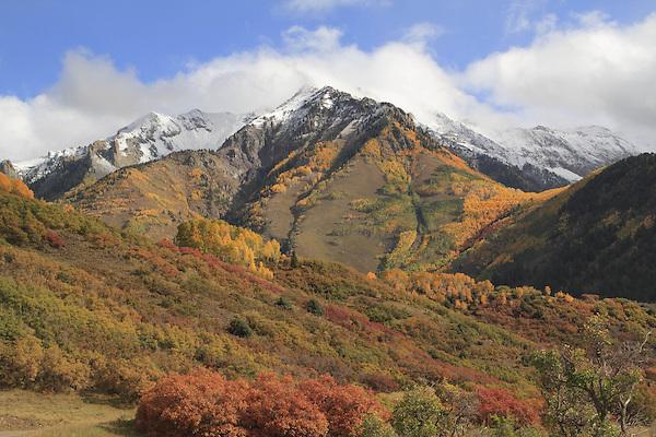 Snow capped mountain with aspen trees and scrub oak, near Telluride, Colorado, USA.