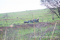 Africa, Swaziland, Malkerns. Milwane Nature Reserve game drive.