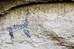 Llama (Lama glama) petroglyph, Abra Granada, Andes, northwestern Argentina
