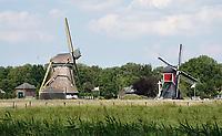 Nederland Oud-Zuilen - 2020. Twee molens aan de Vecht.. Rechts de Buitenwegse Molen, een wipmolen. Foto Berlinda van Dam / Hollandse Hoogte