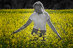 Mustard fields of Sonoma County