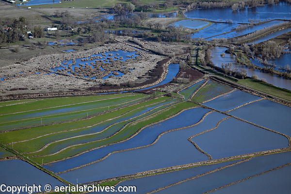 aerial photograph of the rice fields at Rodman Slough, North Lakeport, Lake County, California
