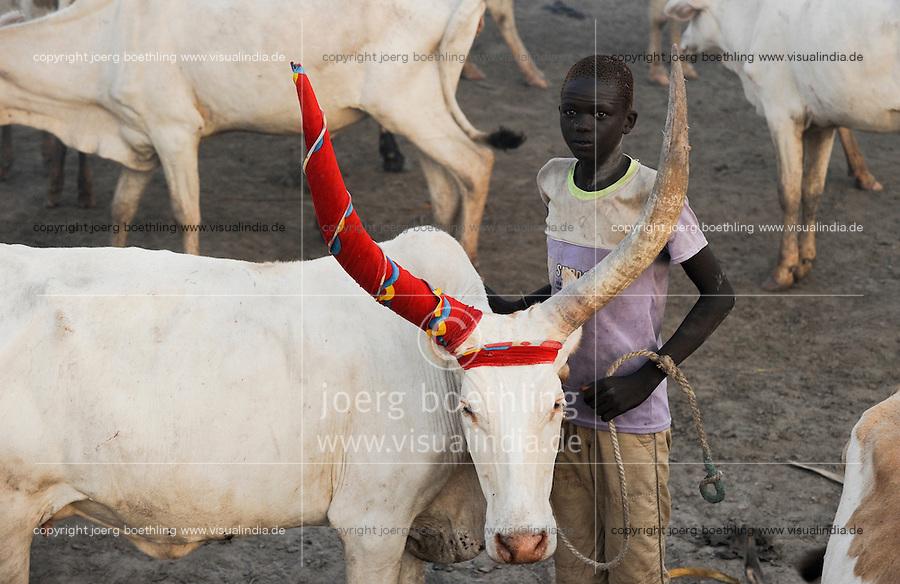 SOUTH SUDAN  Bahr al Ghazal region , Lakes State, young Dinka shepherd with Zebu cow in cattle camp near Rumbek / SUED-SUDAN  Bahr el Ghazal region , Lakes State, junger Dinka Hirte mit Zeburindern im cattle camp