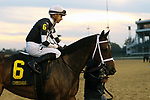 LOUISVILLE, KY -NOV 11: Mr. Misunderstood (Florent Geroux) wins the 14th running of the G3 Commonwealth Stakes at Churchill Downs, Louisville, Kentucky. Owner Flurry Racing Stables, LLC (Staton Flurry), trainer Brad H. Cox. By Archarcharch x Jodys Deelite, by Afternoon Deelites. (Photo by Mary M. Meek/Eclipse Sportswire/Getty Images)