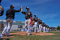 Erie Seawolves, lead by Connor Harrell (15), high five after a game against the Richmond Flying Squirrels on May 20, 2015 at Jerry Uht Park in Erie, Pennsylvania.  Erie defeated Richmond 5-2.  (Mike Janes/Four Seam Images)