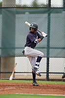GCL Yankees East Alexander Vargas (12) bats during a Gulf Coast League game against the GCL Phillies West on August 3, 2019 at the Carpenter Complex in Clearwater, Florida.  The GCL Phillies West defeated the GCL Yankees East 15-7 in a completion of a game that was originally started on July 26, 2019.  (Mike Janes/Four Seam Images)
