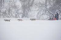 Tourbillon hivernal parc de la Tortue à Delson<br /> <br /> <br /> PHOTO :   Agence Quebec Presse