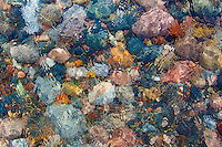 """""""Watercolor #2"""" - Lake Superior beach rock, Two Hearted Rive"""