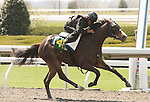 07 April 2011.  Hip #48 Stevie Wonderboy - Quanah County filly, consigned by Kirkwood Stables.