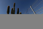 Verizon IndyCar Series<br /> Desert Diamond West Valley Phoenix Grand Prix<br /> Phoenix Raceway, Avondale, AZ USA<br /> Friday 28 April 2017<br /> Mikhail Aleshin, Schmidt Peterson Motorsports Honda<br /> World Copyright: Michael L. Levitt<br /> LAT Images
