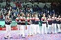 Tennis : Davis Cup Final