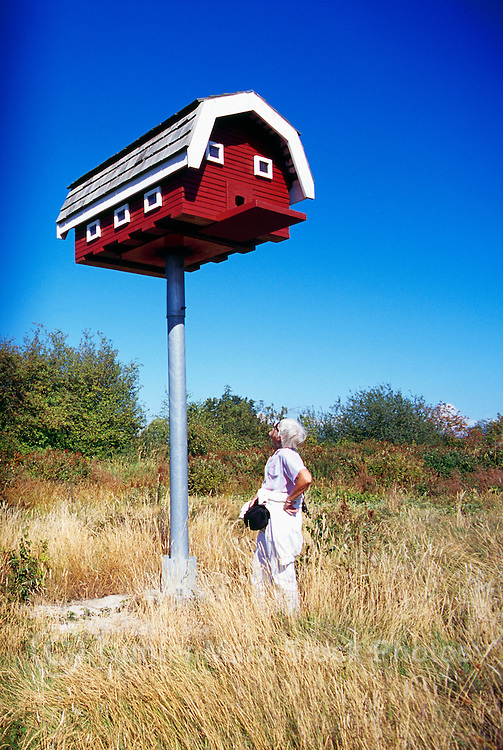 Terra Nova Rural Park, Richmond, BC, British Columbia, Canada - Large Birdhouse for Barn Owls (Model Released Woman)