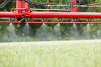Spraying winter wheat in ear - Lincolnshire, June