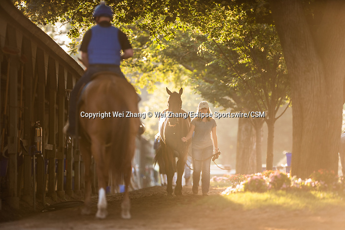July 4, 2019: The view of the Oklahoma Training Track and the barn area on the backside on sleepy July 4th holiday morning at Saratoga Race Course in Saratoga Springs, New York. Wei Zhang/Eclipse Sportswire/CSM